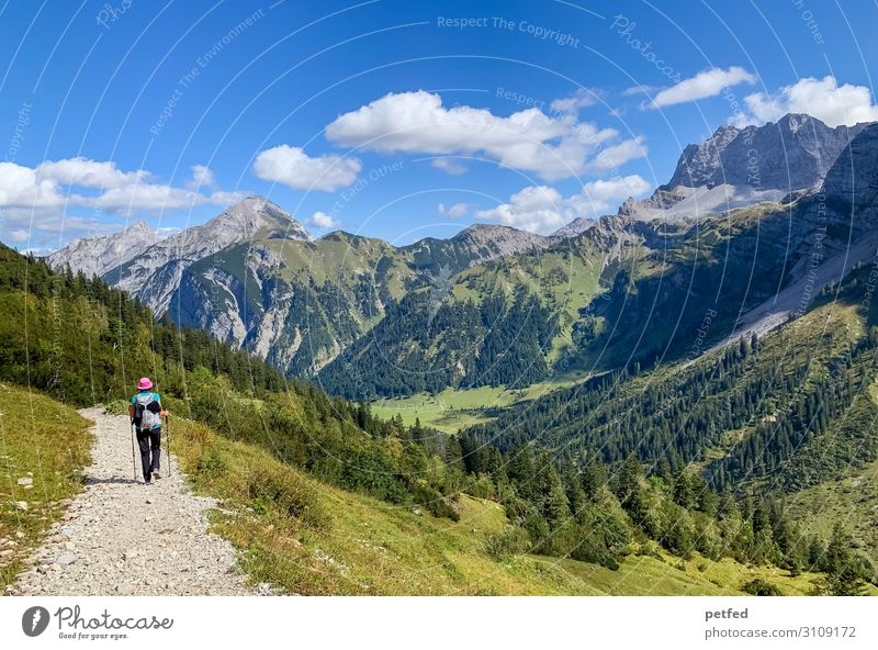peregrination Mountain Hiking 1 Human being Sky Clouds Summer Forest Movement Going Vacation & Travel Free Infinity Natural Blue Green Joy Contentment Serene
