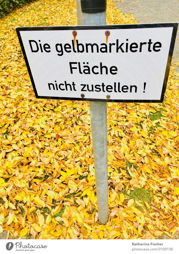 autumn foliage Nature Autumn Climate Leaf Characters Signage Warning sign Yellow Gold Green Black White Lanes & trails Barrier Signs and labeling Autumn leaves