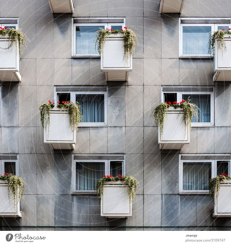 usury Living or residing Flat (apartment) Flower Facade Balcony Window Arrangement Prefab construction Tenancy law Gloomy Colour photo Exterior shot Deserted