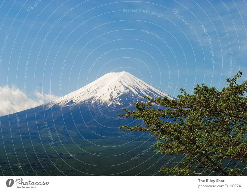 Mount Fuji Lifestyle Environment Nature Landscape Air Spring Climate Climate change Weather Beautiful weather mount Fuji Tokyo Vacation & Travel Old Joy Happy