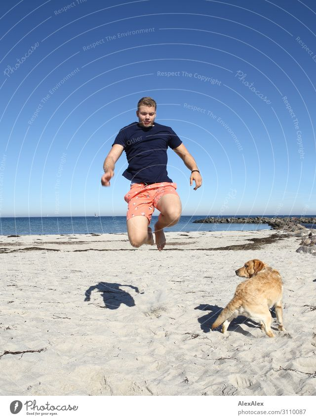 Young man jumps past Labrador on the beach Lifestyle Joy Athletic Fitness Summer Summer vacation Beach Ocean Track and Field Youth (Young adults) 13 - 18 years