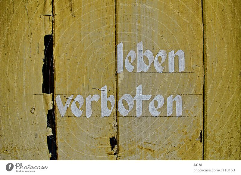 Background picture Wood Life Graffiti Yellow Wall (building) Funny Emotions Wall (barrier) Characters Signs and labeling Joie de vivre (Vitality) Signage