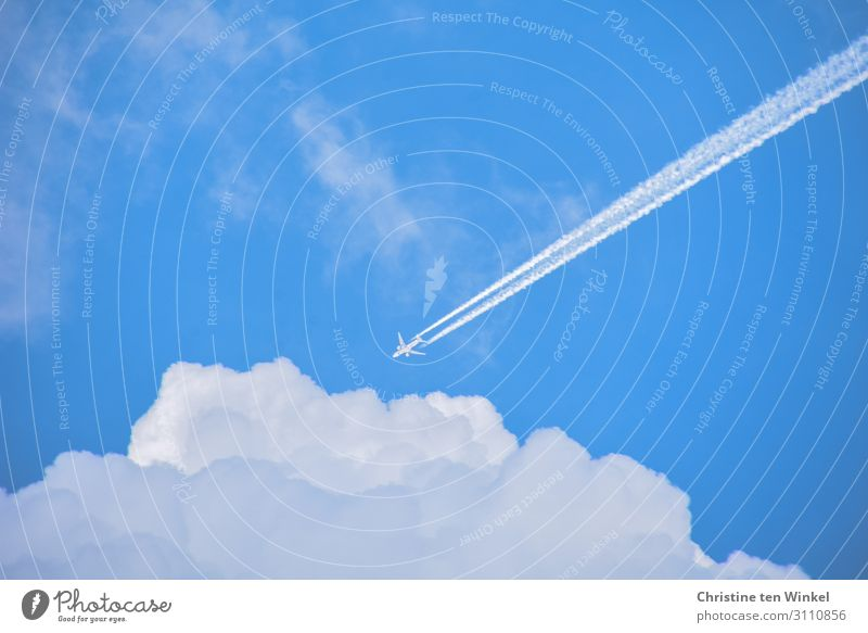 Aircraft with contrails in the blue sky flying towards white clouds Vacation & Travel Tourism Far-off places Environment Sky Clouds Sunlight Beautiful weather