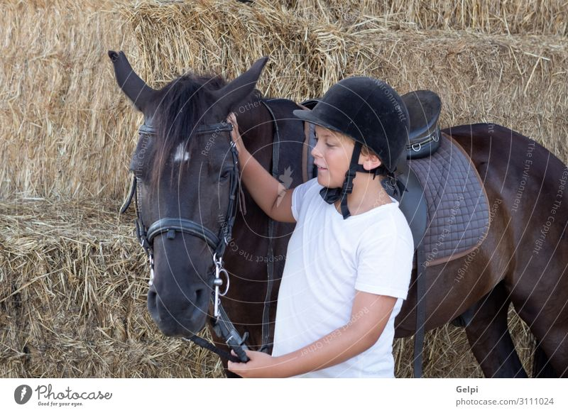 Learning to ride in the riding school Lifestyle Happy Leisure and hobbies Vacation & Travel Summer Child School Boy (child) Man Adults Friendship Infancy