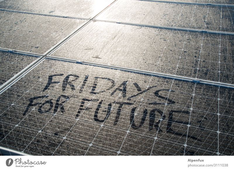 fridays for future Advancement Future Energy industry Renewable energy Solar Power Energy crisis Fear Apocalyptic sentiment Resolve Success Fairness Hope
