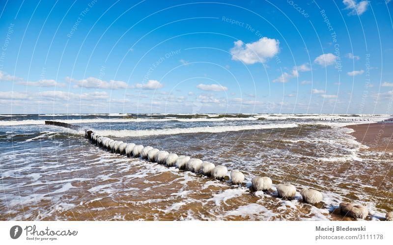 Beach with an icy wooden breakwater. Vacation & Travel Far-off places Freedom Ocean Winter Nature Landscape Sky Horizon Waves Coast Baltic Sea Exceptional Blue