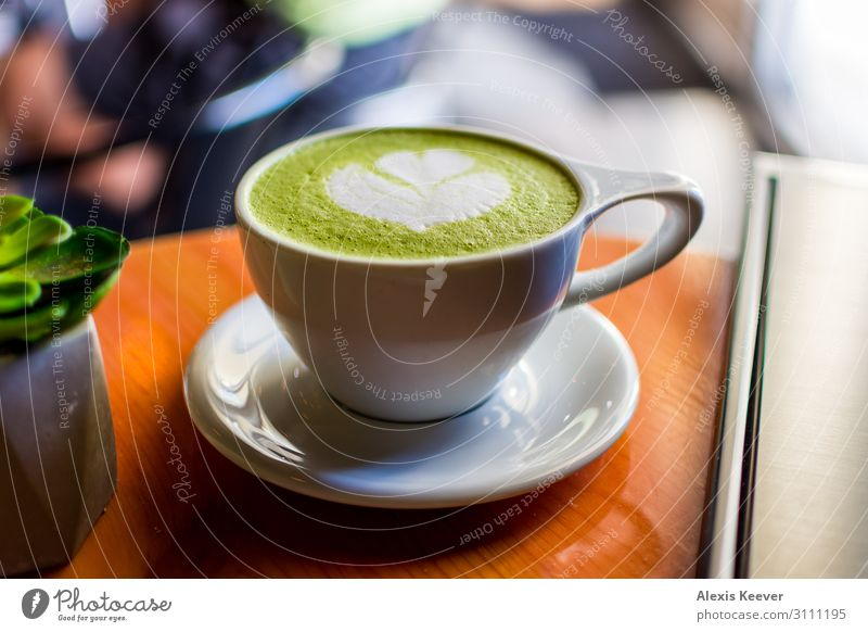 Matcha latte art with succulent at a coffee shop on a table Food To have a coffee Beverage Coffee Latte macchiato Espresso Cup Lifestyle Plant Cactus Pot plant