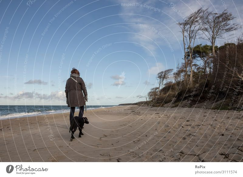 Woman walking the dog at the baltic sea. Lifestyle Style Healthy Wellness Relaxation Meditation Leisure and hobbies Vacation & Travel Tourism Trip Sightseeing