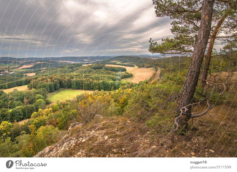 Hörselberg 3 Leisure and hobbies Vacation & Travel Tourism Trip Summer Mountain Hiking Thuringia Environment Nature Landscape Plant Earth Sky Clouds Sunlight