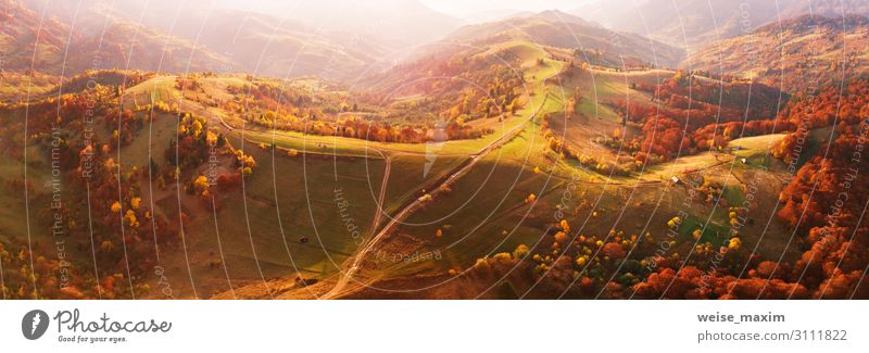 Autumn mountain panorama. Sunny meadow and colorful forest Vacation & Travel Trip Adventure Mountain Environment Nature Landscape Earth Sunrise Sunset Sunlight