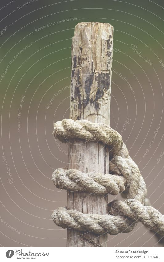 Knot from a rope on a wood Garden Field Yacht harbour Soft Gray Lanes & trails boat captured close corduroy cross Dock fast god holding knot line natural