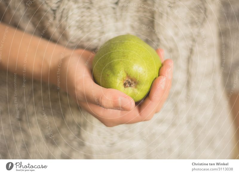 young woman in a braided sweater holding a pear in her hand Food Fruit Pear Nutrition Organic produce Vegetarian diet Slow food Feminine Young woman