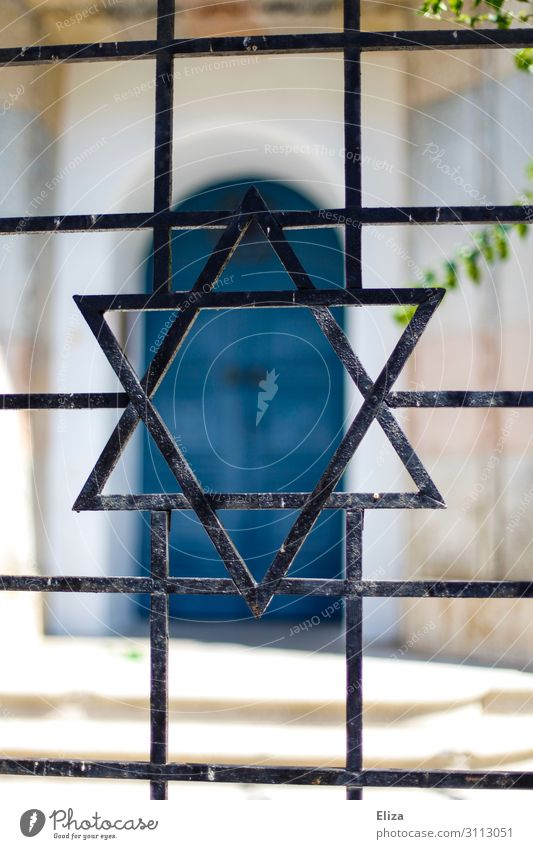 Star of David Synagogue Belief Religion and faith Judaism Jewish Quarter Symbols and metaphors Gate Garden Fence Iron Metal Peaceful Israel Mass murder