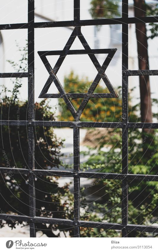 Fence with a Star of David, symbol of Judaism, in front of a synagogue Synagogue religion Iron Garden Religion and faith Israel