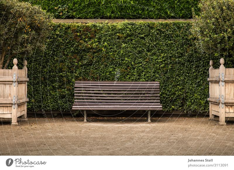 Bank im Park Relaxation Garden Plant Sand Tree Bushes Leaf Small Town Church Places Wood Old Fitness Feeding Walking Lie Sit Wait Natural Clean Brown Green