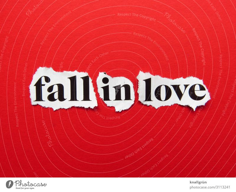 Fall in Love Characters Signs and labeling Communicate Gray Red White Emotions Happy Joie de vivre (Vitality) Sympathy Together Infatuation Desire Beginning