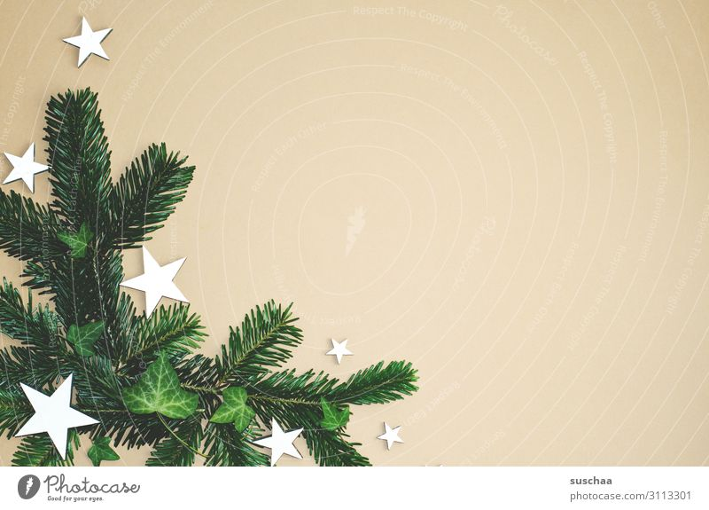 Christmas decoration (3) Star (Symbol) Fir branch Christmas & Advent Card Decoration flatlay Neutral Background a lot of free text space Ivy Foliage plant