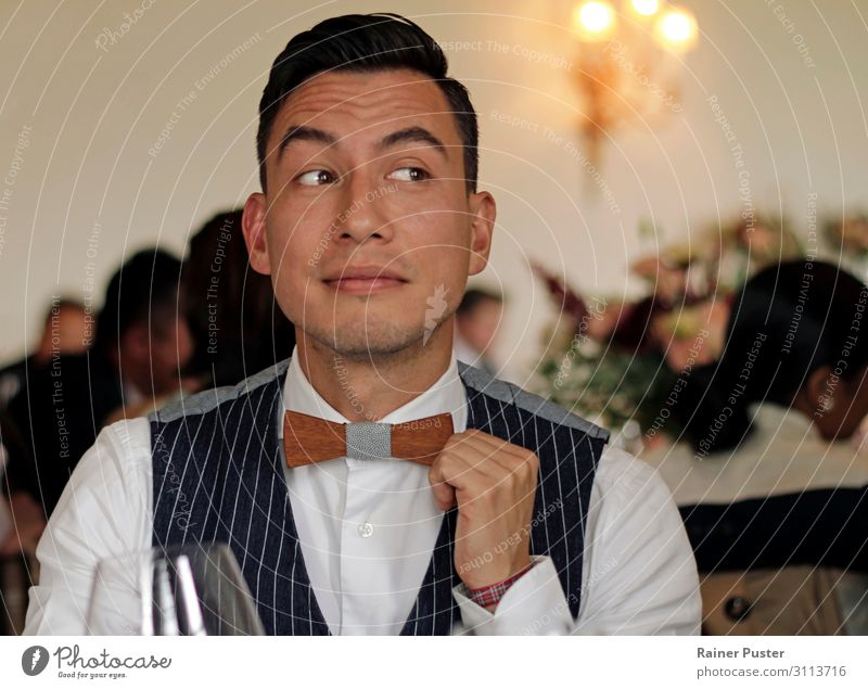 Man with vest and wooden fly Feasts & Celebrations Wedding Masculine Adults 1 Human being 30 - 45 years Castle Suit Vest Bow tie Happy Reliability Joy