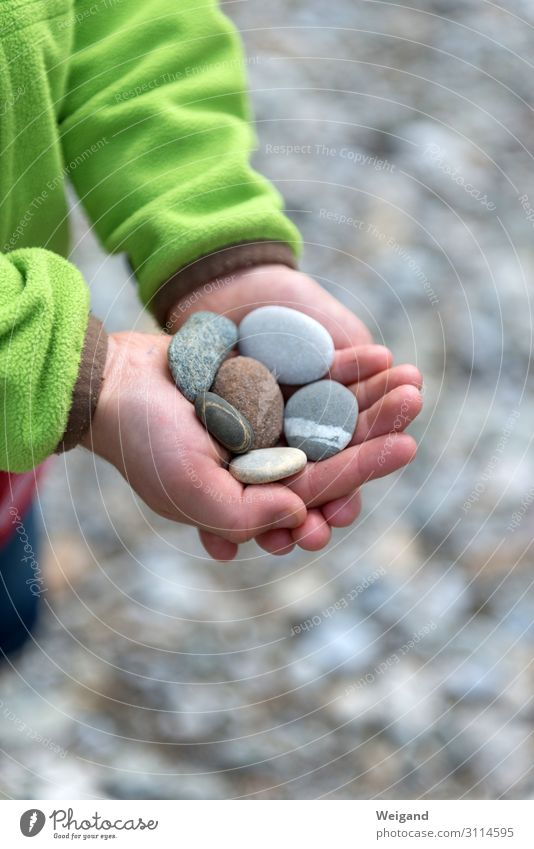 pebble Harmonious Kindergarten Child Boy (child) 3 - 8 years Infancy Stone Sustainability Goodness Humanity Solidarity Help To console Grateful Sadness Concern