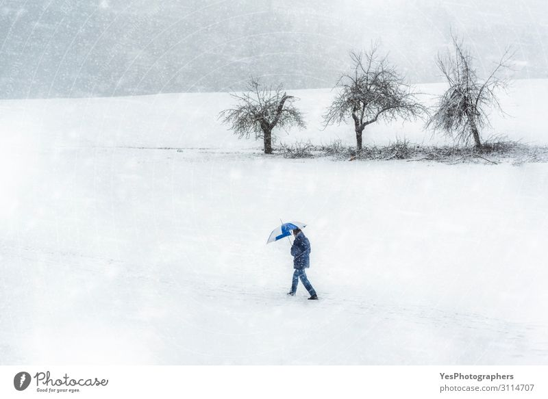 Snowstorm scenery. Man walking through snowfall. Winter weather Hiking Adults Nature Climate change Bad weather Storm Gale Snowfall White Loneliness Germany