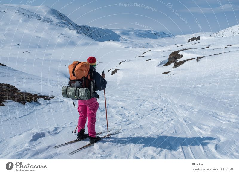Distant destinations, adventurer looks into the wide mountain world Adventure Winter Snow Winter vacation Winter sports Young woman Youth (Young adults) Nature