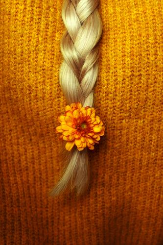 autumn III Human being Feminine Hair and hairstyles Blonde Long-haired Braids Yellow Gold Orange Cuddly Plaited Colour photo Subdued colour Copy Space left