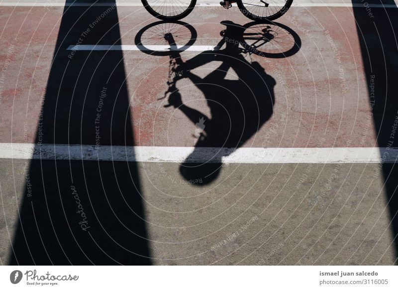 man on the bike shadow silhouette on the street Man Bicycle Cycling Sunlight Shadow Silhouette Ground Asphalt Neutral Background Abstract Transport Cycle seat