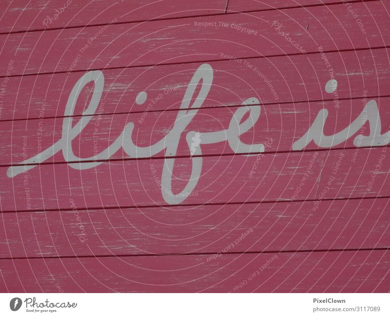 life Style Design Joy Night life Entertainment Office Culture Youth culture Draw Dream Beautiful Brown Red Emotions Moody Tolerant Colour photo Exterior shot