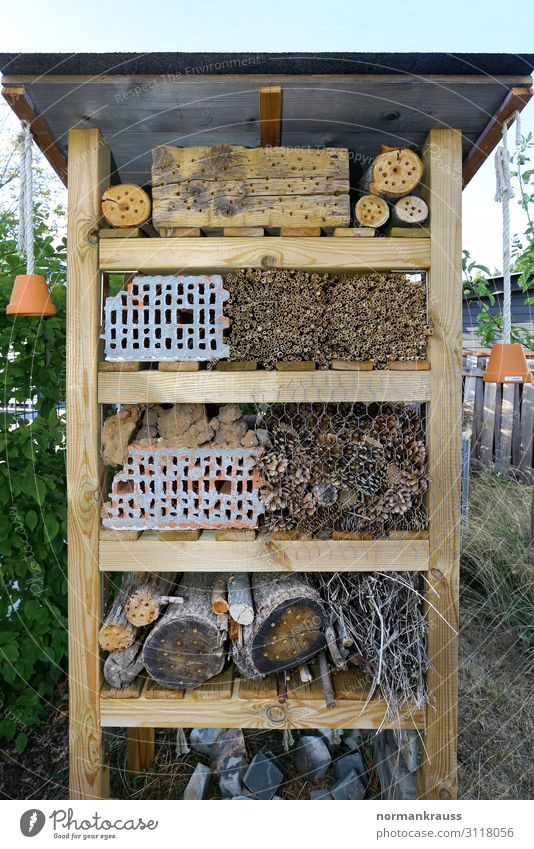 insect hotel Environment Stone Wood Brick Living or residing Sustainability Natural Brown Nature Environmental protection Animal protection Ecological