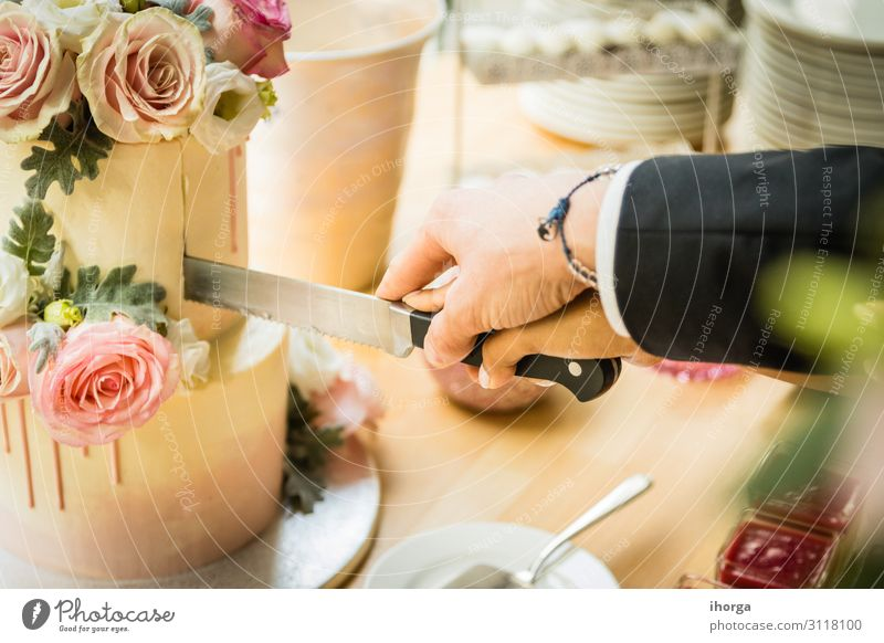 wedding couple cutting the wedding cake on their wedding day Cake Dessert Eating Joy Beautiful Decoration Table Feasts & Celebrations Wedding Woman Adults Man