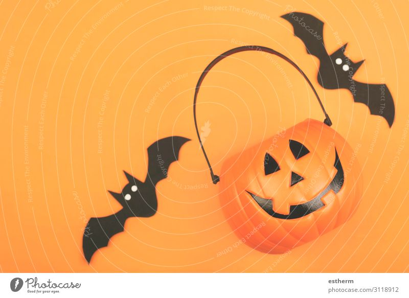 Happy Halloween. Halloween pumpkin with bats Design Feasts & Celebrations Hallowe'en Autumn Animal Spider Threat Funny Orange Black Death Fear Horror Mysterious