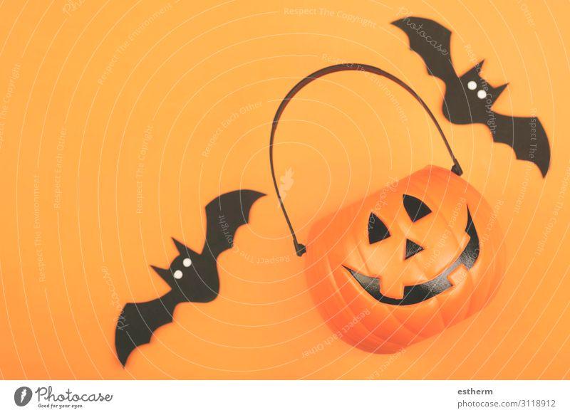 Happy Halloween. Halloween pumpkin with bats Design Feasts & Celebrations Hallowe'en Autumn Animal Spider Threat Funny Orange Black Death Fear Horror Mysterious