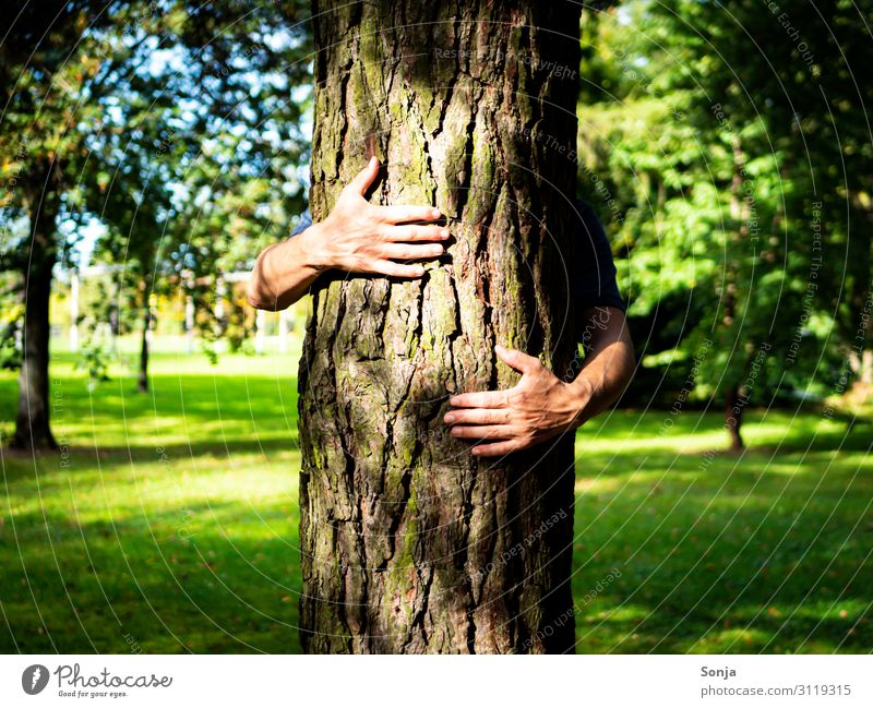 Man hugging a tree in a park Lifestyle Masculine Adults Hand Fingers 1 Human being 45 - 60 years Environment Nature Summer Autumn Climate change Tree Grass Park