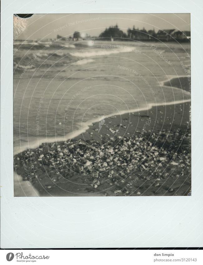 California/Baltic Sea Vacation & Travel Far-off places Beach Ocean Coast Village Mussel Maritime Moody Idyll Polaroid Black & white photo Exterior shot Close-up