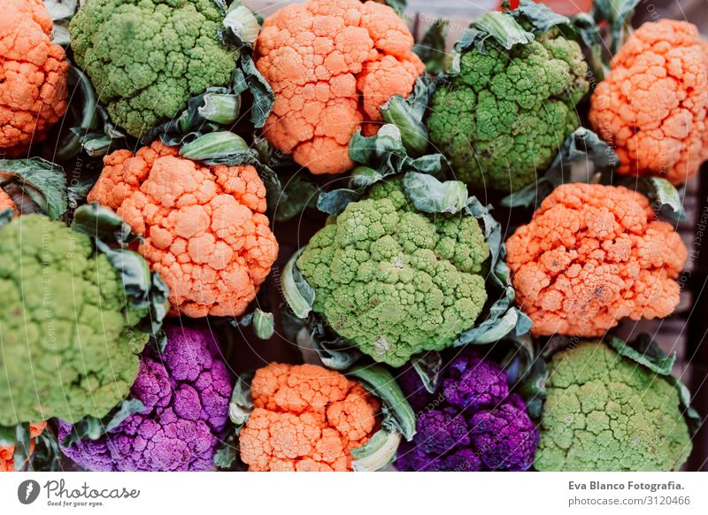 colorful cauliflowers, orange, green and purple Nature Summer Colour Beautiful Green Flower Leaf Healthy Food Eating Lifestyle Autumn Natural Exceptional Orange