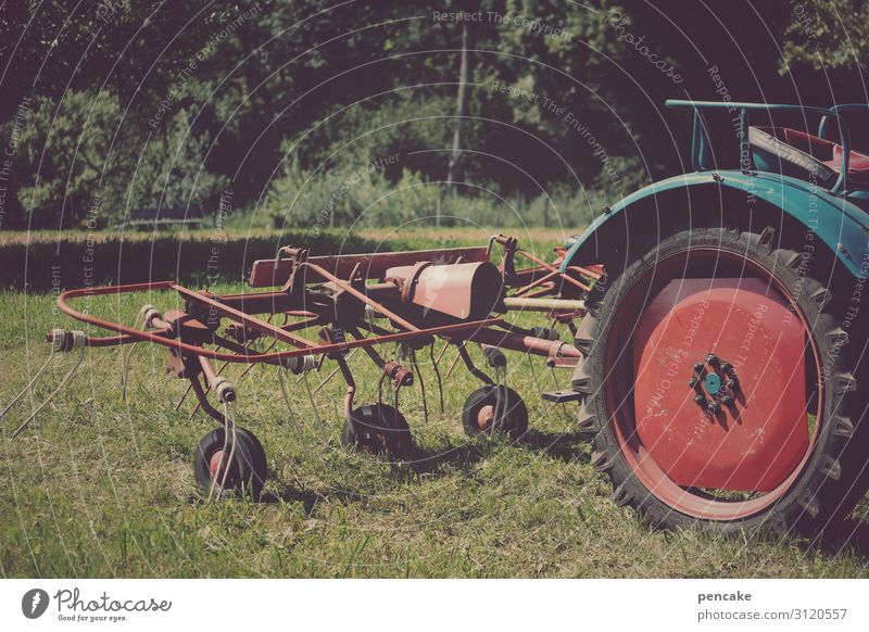Valuable heavy equipment. Nature Beautiful weather Meadow Field Vehicle Tractor Rotate Driving Reap Hay Agriculture Old Vintage Colour photo Exterior shot