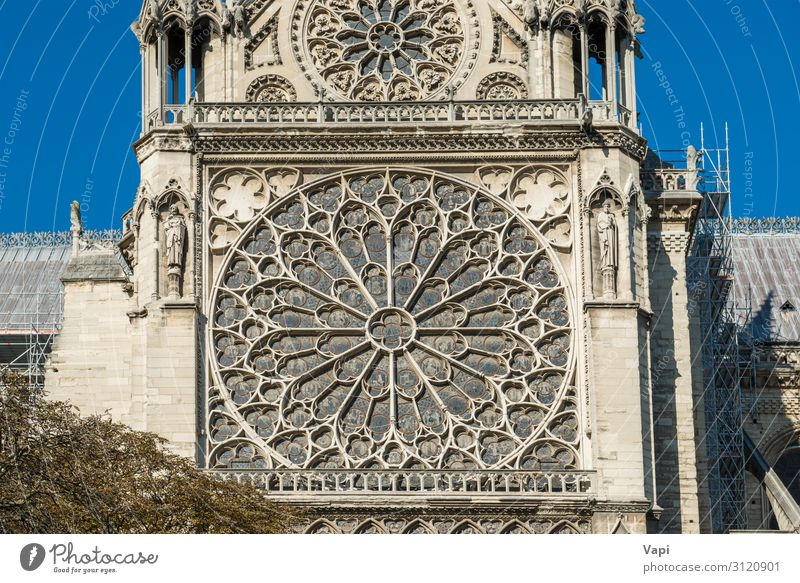 Notre Dame de Paris Sky Vacation & Travel Old Summer Blue Town White Tree Window Architecture Religion and faith Yellow Wall (building) Style Building Tourism