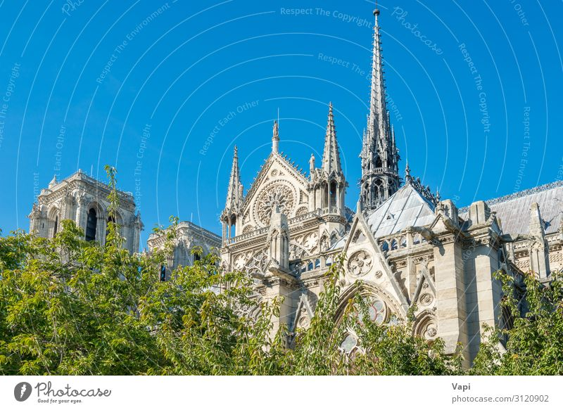 Notre Dame de Paris Style Vacation & Travel Tourism Trip Sightseeing City trip Summer Summer vacation Museum Sculpture Architecture Culture Landscape Sky