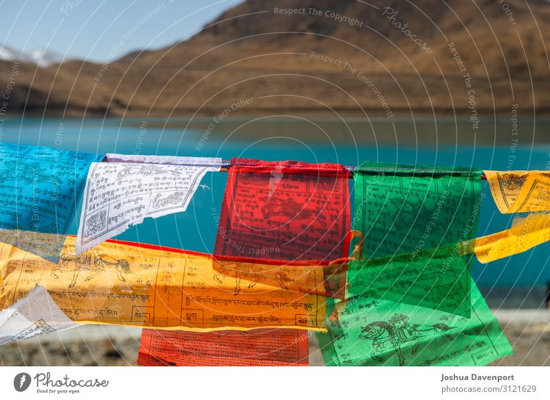 Tibetan Prayer Flags Vacation & Travel Travel photography Mountain Religion and faith Tourism Culture Asia China Buddhism Prayer flags Bright Colours