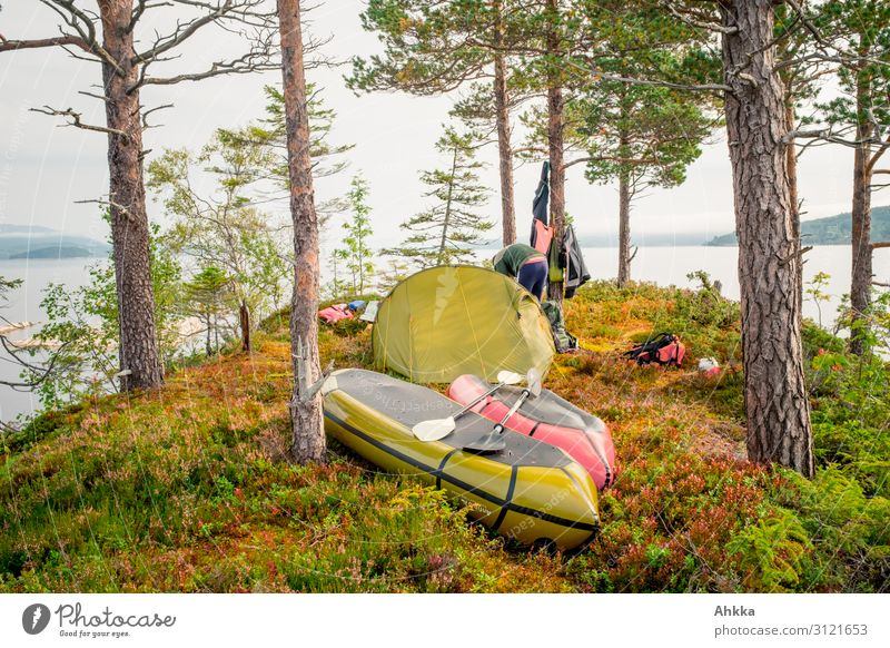 island conquest Contentment Relaxation Calm Vacation & Travel Adventure Nature Autumn Tree Pine Lakeside Island Scandinavia Tent camp Canoe