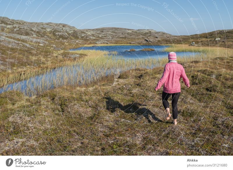 Barefoot in Fjell Vacation & Travel Trip Adventure Far-off places Freedom Young woman Youth (Young adults) Nature Mountain Bog Marsh Norway Discover Walking