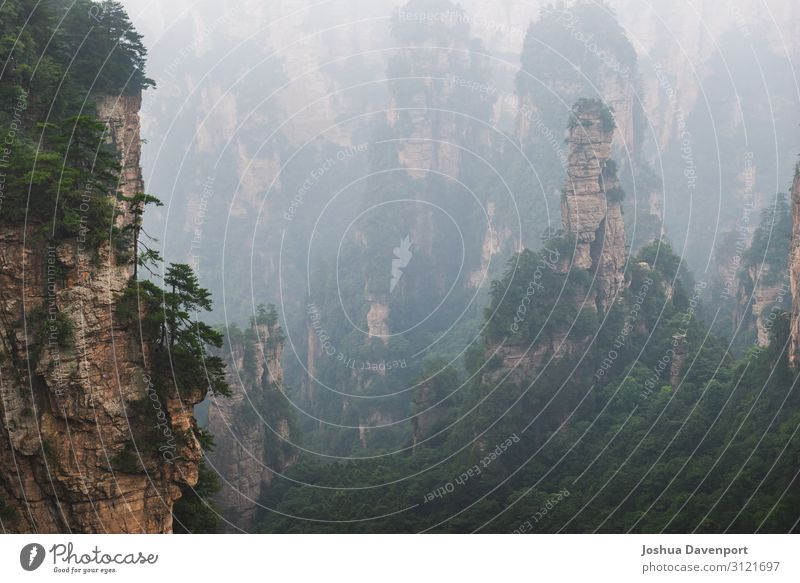 Zhangjiajie National Forest Park Vacation & Travel Tourism Sightseeing Nature Mountain Beautiful Asia asia travel China famous place hunan province landmark