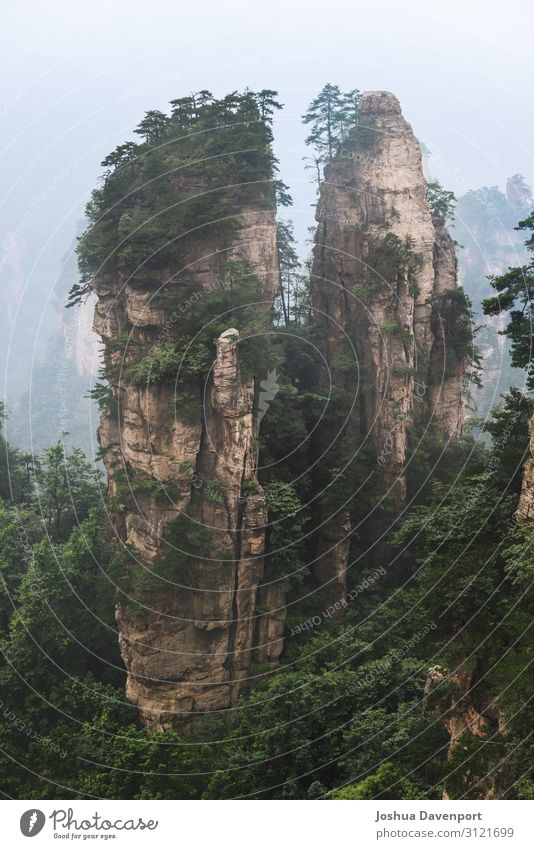 Zhangjiajie National Forest Park Vacation & Travel Tourism Sightseeing Nature Mountain Famousness Beautiful Asia asia travel China famous place hunan province
