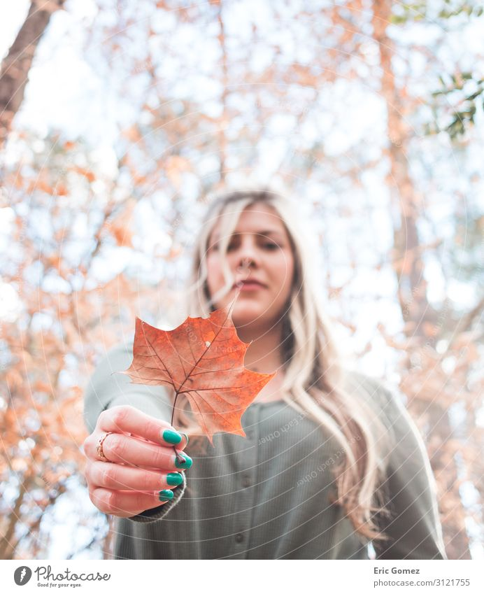 Young blonde woman holding orange leaf Feminine Young woman Youth (Young adults) 18 - 30 years Adults Plant Beautiful weather Tree Leaf Blonde Happiness Soft