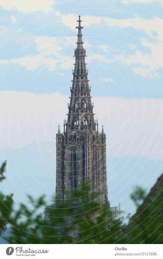 Ulm Cathedral Tower Architecture Culture Germany Europe Church Manmade structures Building Tourist Attraction Landmark Monument Religion and faith Art Past Time