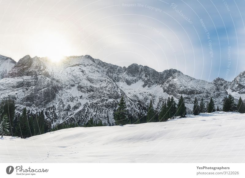 Winter morning scene with snowy Alps mountains in Austria Vacation & Travel Trip Adventure Snow Mountain Christmas & Advent New Year's Eve Nature Landscape