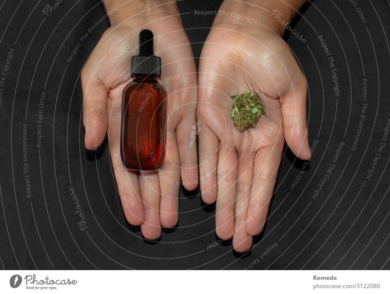 Hands showing marijuana bud and a bottle of cbd oil. Food Herbs and spices Cooking oil Organic produce Beverage Alcoholic drinks Pot Lifestyle Beautiful