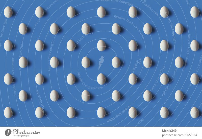 Seamless pattern of a white egg Food Nutrition Breakfast Organic produce Shopping Design Wallpaper Container Fresh Blue Brown White Egg isolated Repeating