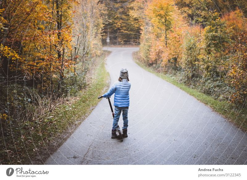 Child Human being Nature Blue Tree Joy Forest Street Autumn Yellow Lanes & trails Happy Brown Gray Infancy Stand