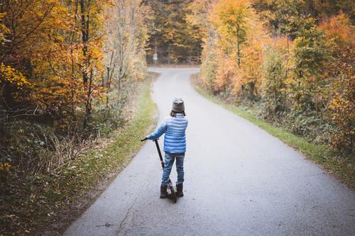 Excursion with scooter Child 1 Human being 3 - 8 years Infancy Nature Autumn Tree Forest Street Lanes & trails Looking Stand Blue Brown Yellow Gray Adventure